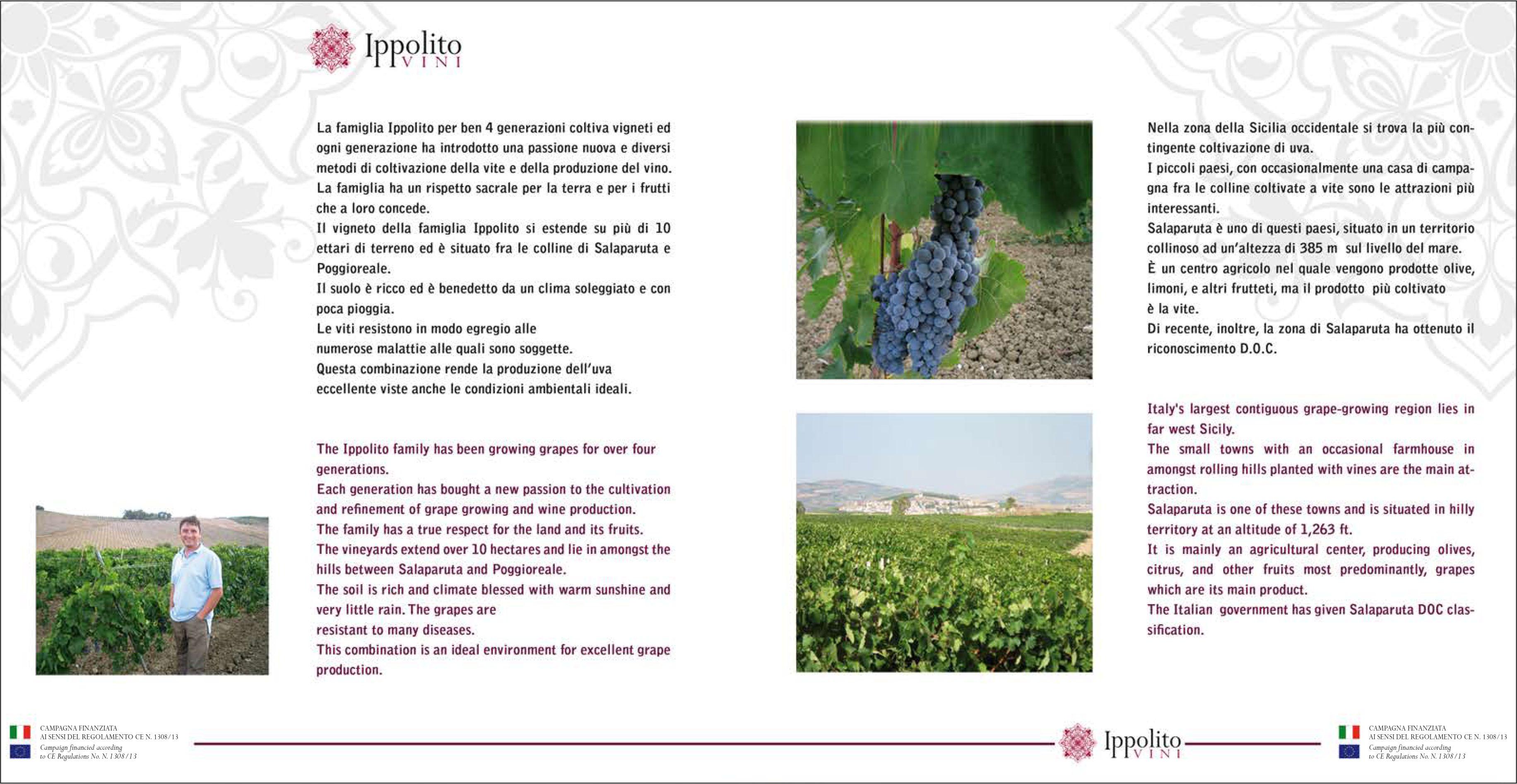 Ippolito - Grillo Sicilia DOC